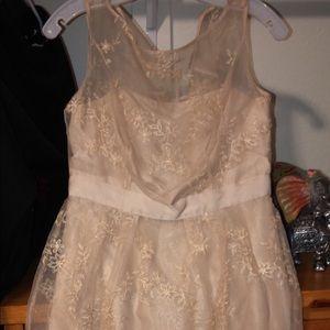 mesh cream dress